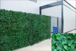 Welsh Green Screens Artificial Screening Ivy Leaf Hedge Panels On Roll Privacy Garden Fence 1m x 3m