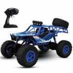Tecnock RC Cars 1:16 Scale Remote Control Car with 50 Mins Play Time