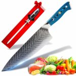 SEIRYUU 20cm/8-Inch Gyuto Chef's Knife - Japanese Pro Chef Series - 73-Layer Stainless Steel VG10 Damascus Blade
