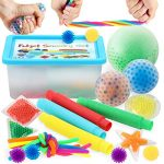 LESONG Newest UpgradedSensory Fidget Toys Set 23 Pcs for Autistic Kids and Adults with Sensory Bean Bags