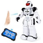 ARANEE RC Robot Toy for Kids